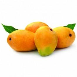 Mango (ଆମ୍ବ)